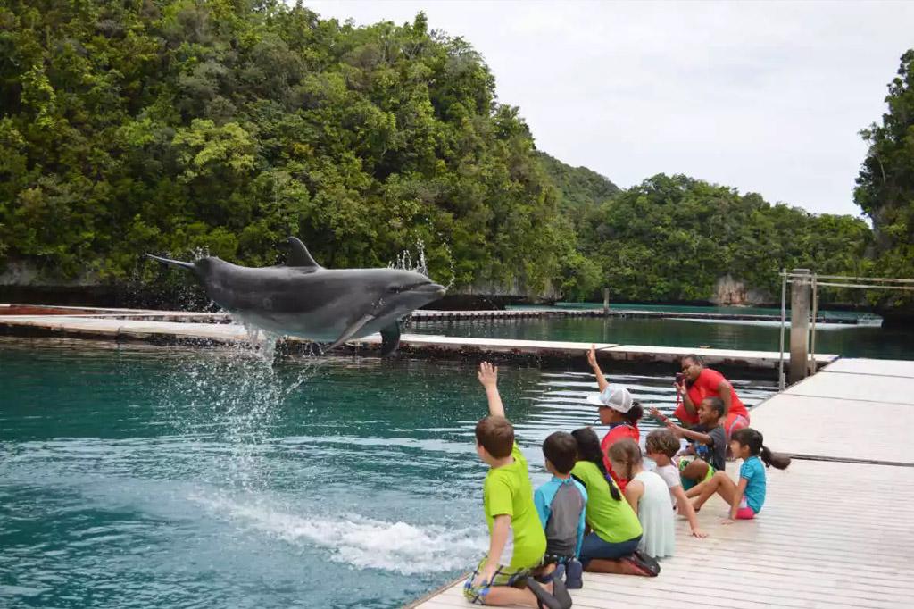 fishnfins - 24-aqua-kids-palau-eco-ranger